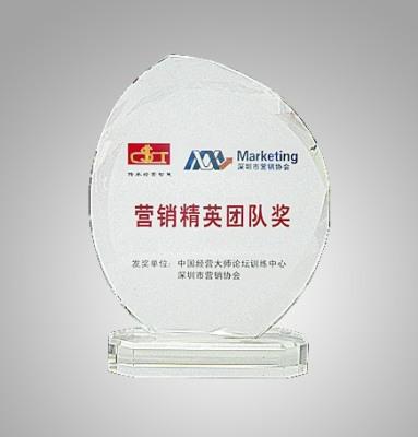 中国精英大师论坛营销精英团队奖